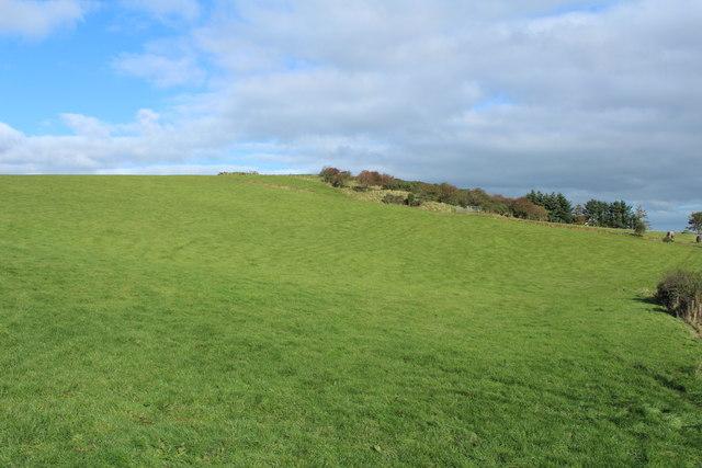 Farmland near Hallyards