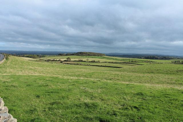 Farmland near Harpercroft