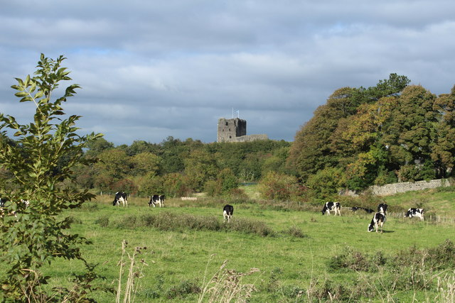 Farmland & Woodland near Dundonald