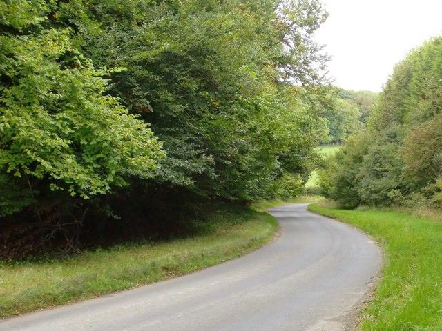 Winding lane towards Fingest