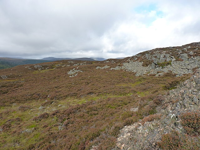 Heathery hillside and scree above Allanaquoich