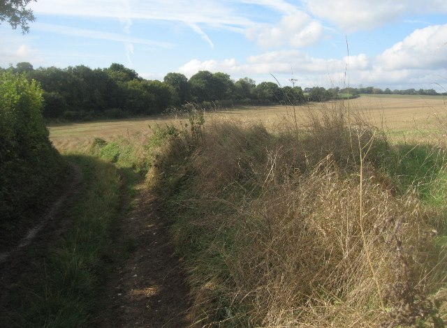 Farm track off Ibworth Lane