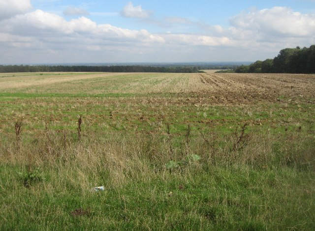 Local high point - Hampshire Downs