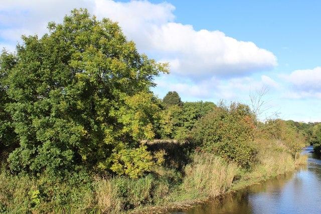 River Carron near Junction 1 of M876