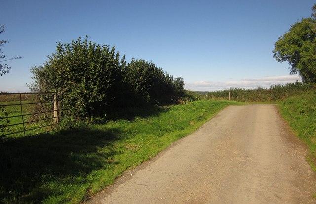 Lane near Notter