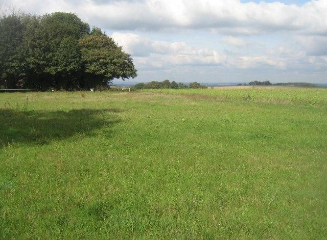 Field east of Hannington