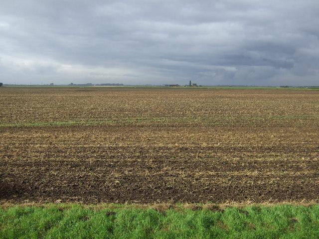 Farmland, Pinchbeck South Fen