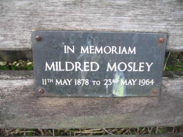 A long lasting memorial bench