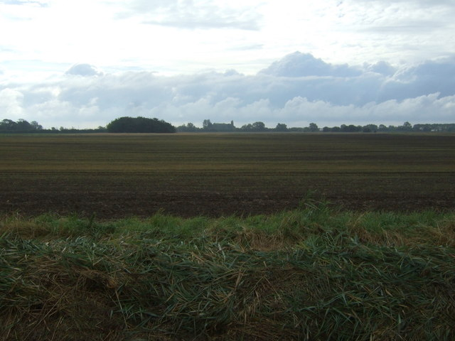 Farmland south of Leaves Lake Drove