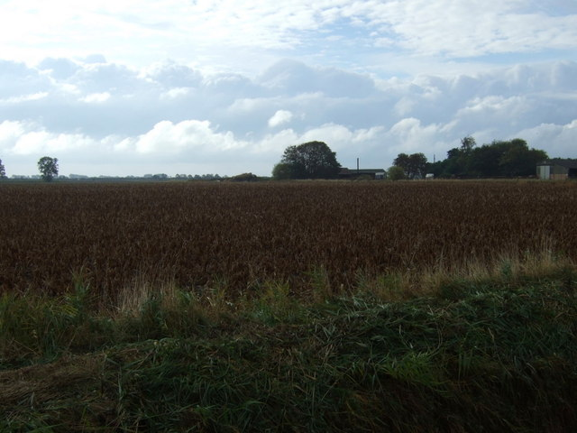 Farmland, Nunnerley House Farm
