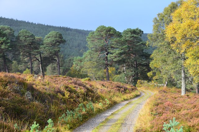 The track up Glen Quoich