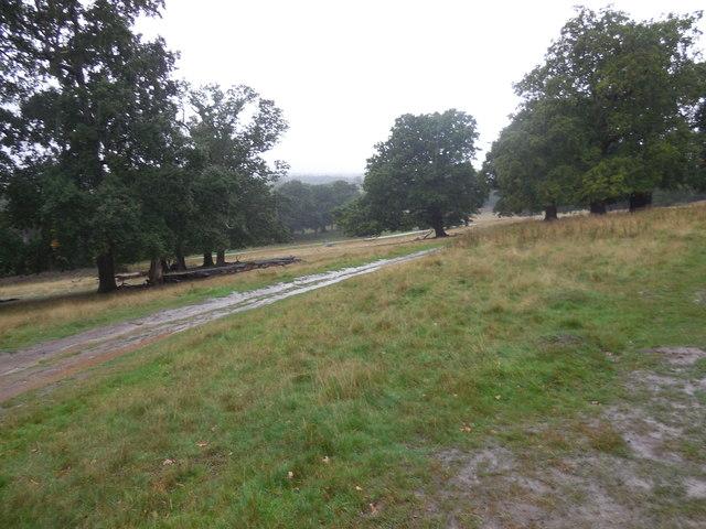 Petersham Park