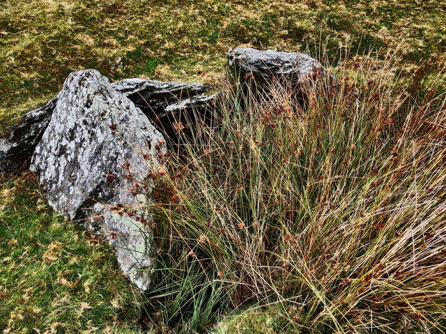 Burial Chamber at Carn Llechart