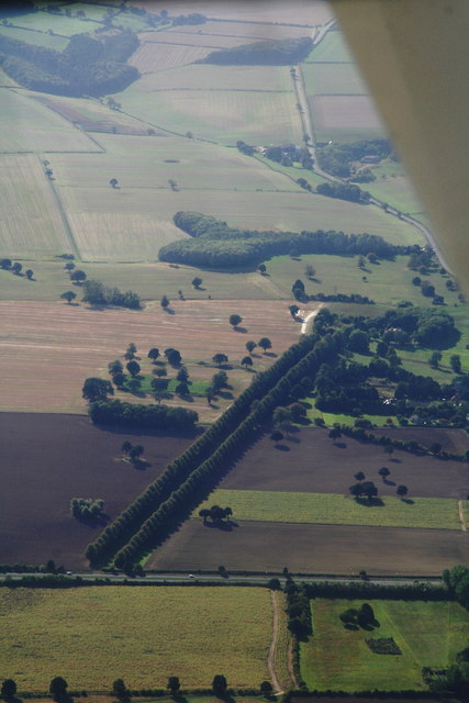 Avenue of trees in Riby Park: aerial 2013