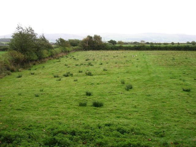 Farmland at Lady Hall