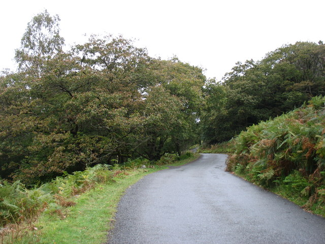 The Dunnerdale lane