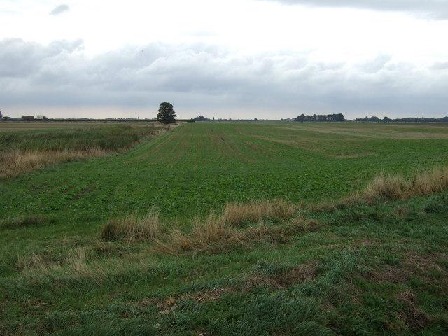 Farmland off Spalding Road