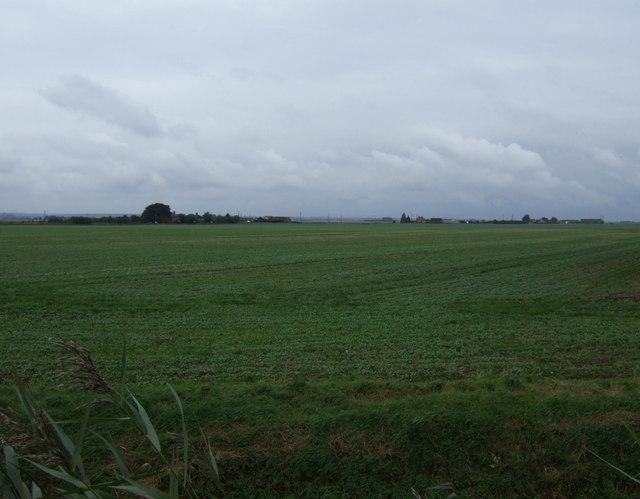Farmland of Spalding Road
