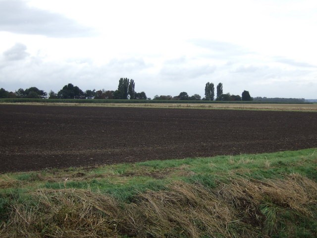 Farmland, Twenty