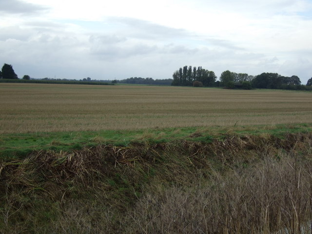 Farmland, Bourne North Fen