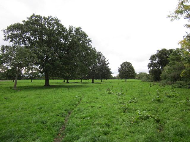 Farmland at Lea Newbold Farm
