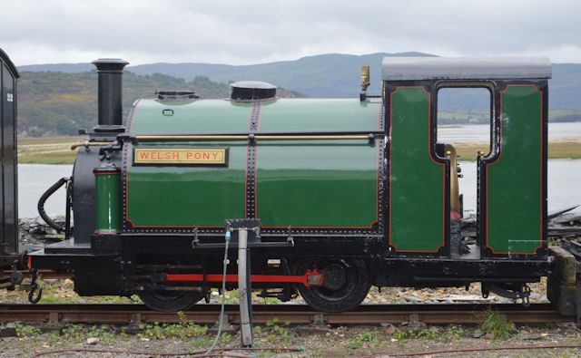 Welsh Pony on display at Harbour station