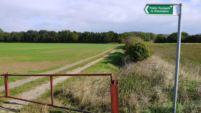 Track to the River Nene