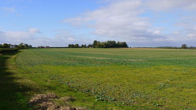 View to Lyveden Farm