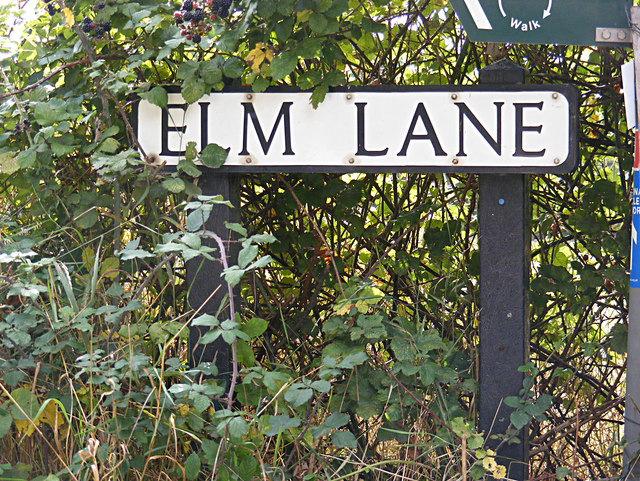 Elm Lane sign