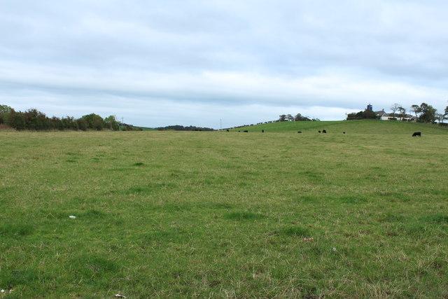 Farmland at Girtridge