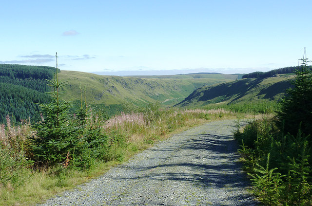 Forestry road above Cwm Irfon, Powys