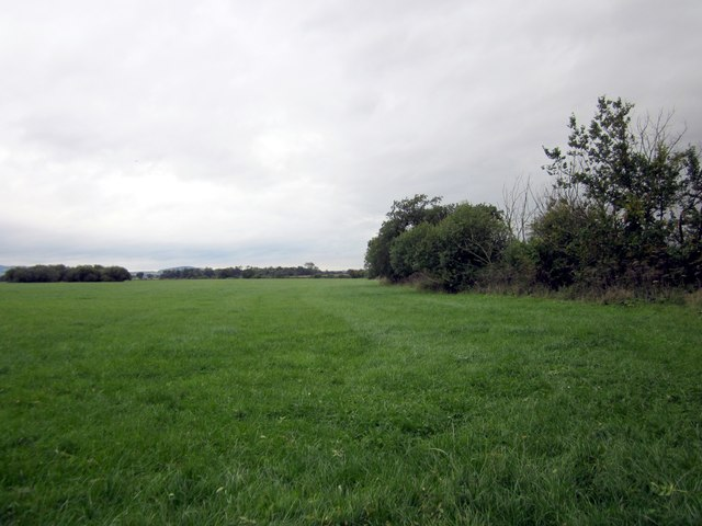Farmland at Lea Newbold