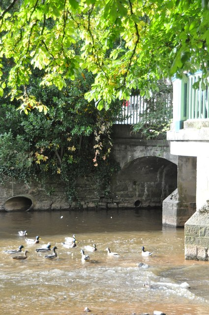 Tiverton : The River Lowman