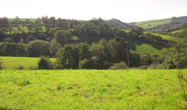 Countryside near Notter Bridge