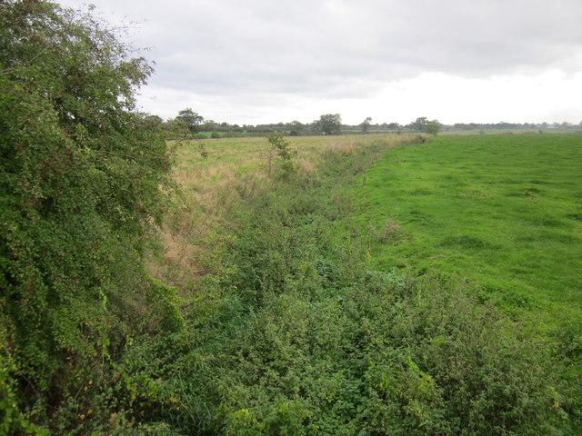 Golborne Brook