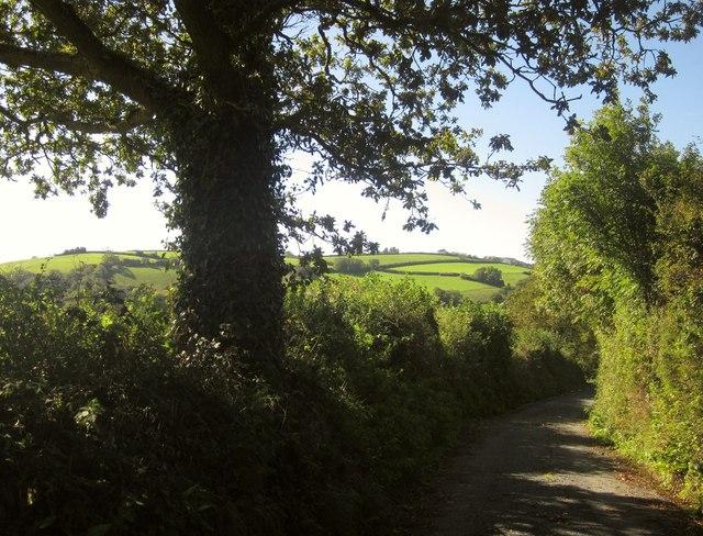 Lane at Notter
