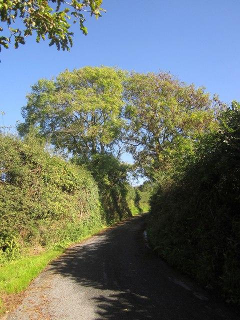 Lane to Notter
