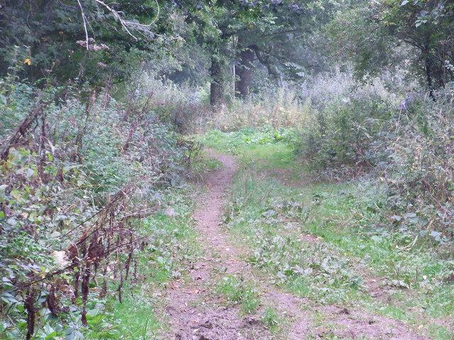 Diamond Way, Bledington Heath