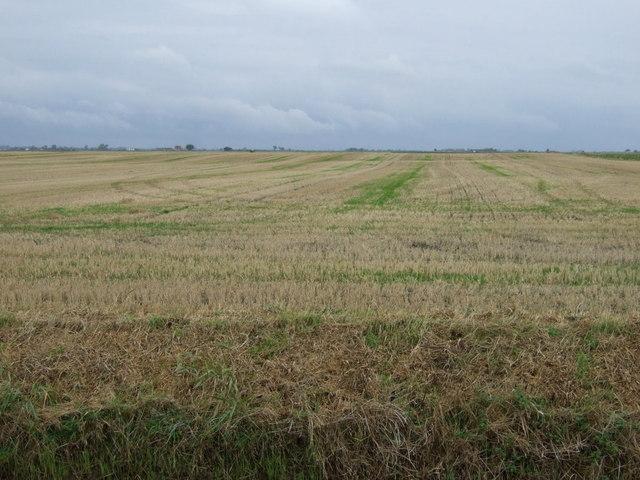 Farmland west of Spinney Farm