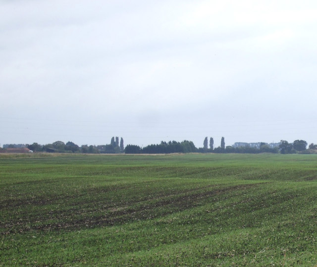Farmland, Bourne North Fen