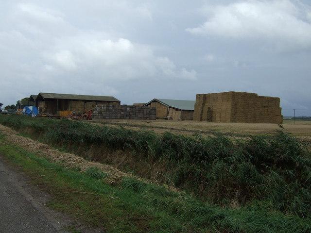 Dyke Fen Farm