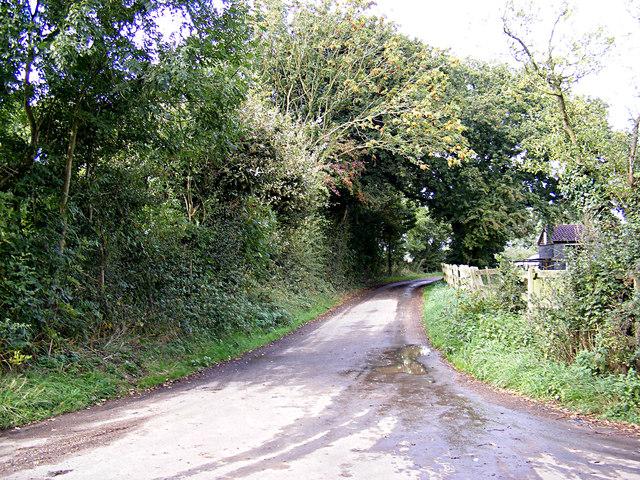 Saxon Lane, Mace Green