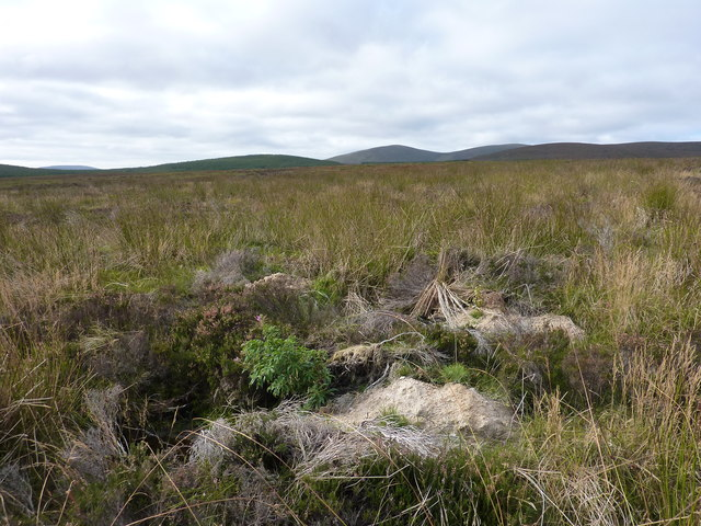 Boggy grass and heather moorland on the lower slopes of Cnoc Muigh-bhlaraidh