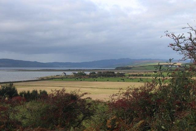 Mixed farmland by St Ninian's Bay