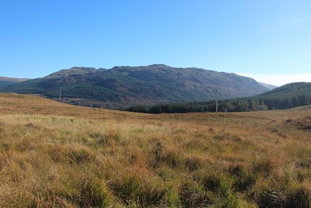Grassy moor above Loch Striven