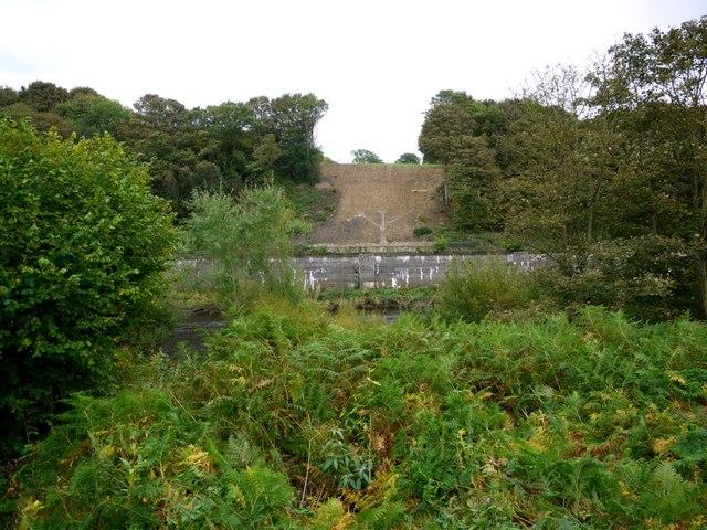 Site of riverside bank consolidation at Eltringham Scar