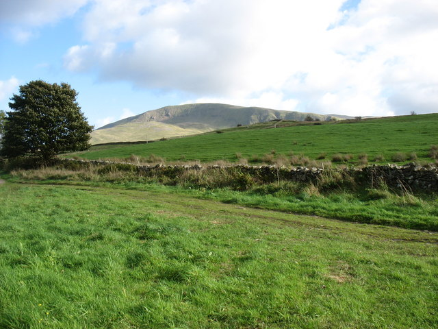 Farmland north of Low Rigg