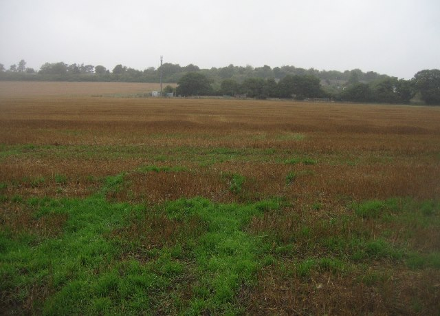 Dull day, dull farmland