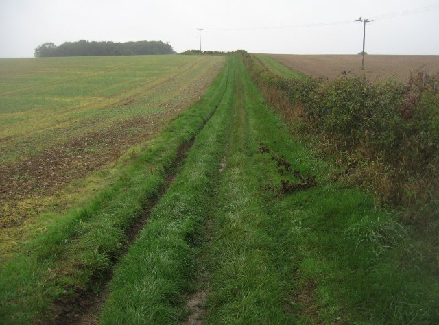 Choice of paths - Wayfarer's Walk