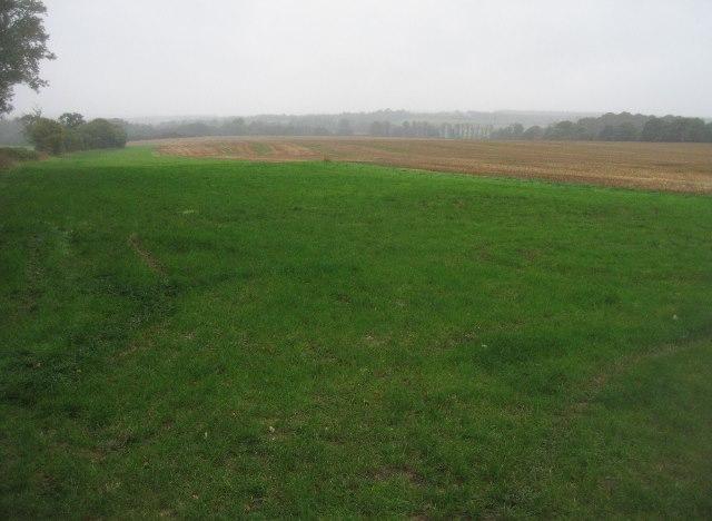 Farmland by the Wayfarer's Walk